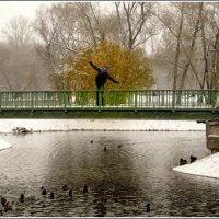Так бы и полетела, как птица :: Galina Belugina