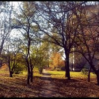 Осень в городе - 2 :: Владимир Бровко