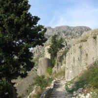 Фрагмент крепости :: Лариса (Phinikia) Двойникова