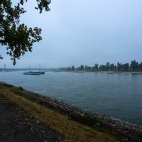 Туман над Рейном, Дюссельдорф :: Witalij Loewin