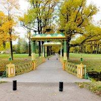 Царское Село. Малый Китайский мост :: Николай