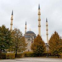 «Сердце Чечни» :: Ардалион Иволгин