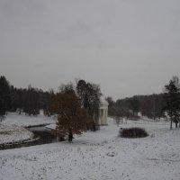 Первый снег в Павловском парке :: Vadim Odintsov