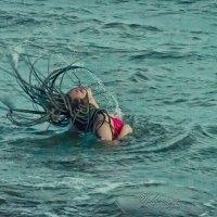 Столичный житель - морской обитатель :: 2903 nika