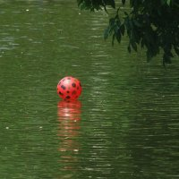 Мой веселый,звонкий мяч! :: Наталья