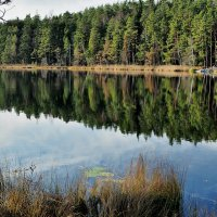 Национальный парк Tyresta :: Swetlana V