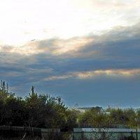 Уж небо осенью дышало :: Люша