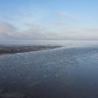 Сегодня у Белого моря (2) :: Владимир Шибинский