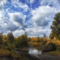 Осенний пейзаж :: Vadim Piottukh