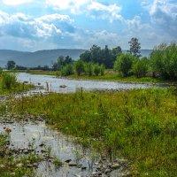 В окрестностях посёлка Большая Речка. :: Rafael