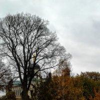 Ионинский монастырь, Киев :: Наталия Каминская