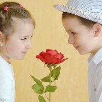 Перед дождем так пахнут розы... :: Yelena LUCHitskaya