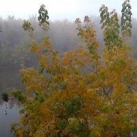 Осень :: Yury Olenin