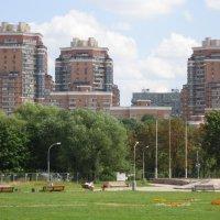 Парк и новые дома :: Дмитрий Никитин