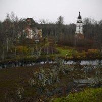 Реконьский монастырь,заброшенный среди болот :: Наталья Левина