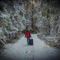 Зимняя дорога :: Юра Викулин