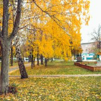 Осенний парк :: Вячеслав Баширов