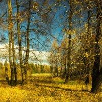 Осень :: Валентин Котляров