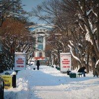 Находка. Снег :: Сергей Лякишев