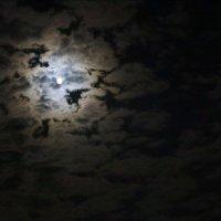 Ночь ,луна в мозаике облаков :: Наталья Чернушкина