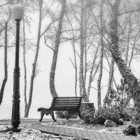 Первый снег :: Igor Antipov