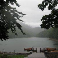 Черногория. Заповедник Београдска гора. Лесное озеро. :: Лариса (Phinikia) Двойникова