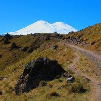 На склонах Эльбруса. Высота около 2500м. :: Vladimir 070549
