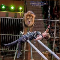 Царь зверей - 2 :: Евгений Старков