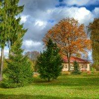 Осенний деревенский пейзаж :: Милешкин Владимир Алексеевич