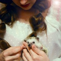 Маленькое счастье :: Julia Volkova