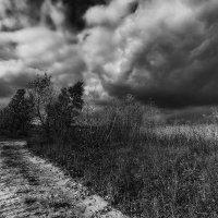 Будет дождь... :: Павел Петрович Тодоров