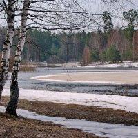 Весенний пейзаж :: Валерий Толмачев
