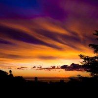 краски неба :: Елена Заичко