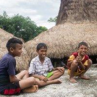 мальчишки с острова Сумба,Индонезия. :: Александр