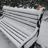 С первым снегом :: Владимир Кочетков