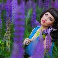 люпиновый рай :: Марина Жажина