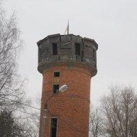 Башня :: Maikl Smit