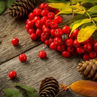 Осенний натюрморт :: Валерий Бочкарев