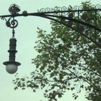 Барселона. Уличный светильник :: татьяна