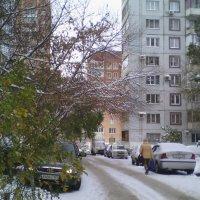 Город в снегу... :: марина ковшова