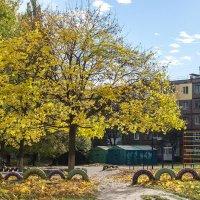 Осенний дворик :: Сергей Тарабара