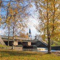 Осень золотая 5 :: Виталий