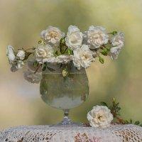 Розы :: Елена Ахромеева