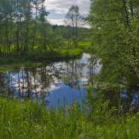 Река Свень :: Александр Березуцкий (nevant60)