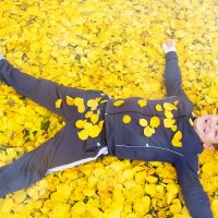 солнышко в солнечной листве :: Oksana Verkhoglyad