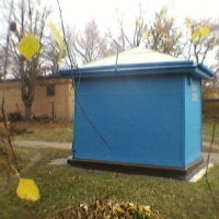 В Україні Осінь! :: Миша Любчик