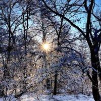 Под голубыми небесами... :: Сергей