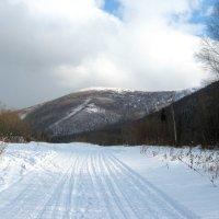 Зима уже не за горами... :: Любовь Иванова