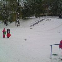 Вот,кто рад раннему снегу.... :: марина ковшова