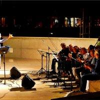 Ночной концерт :: Natali